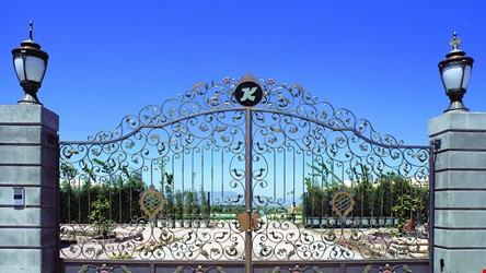 Ornamental Wrought Iron Gate Application - 50