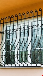 Ornamental Wrought Iron Window Application - 1